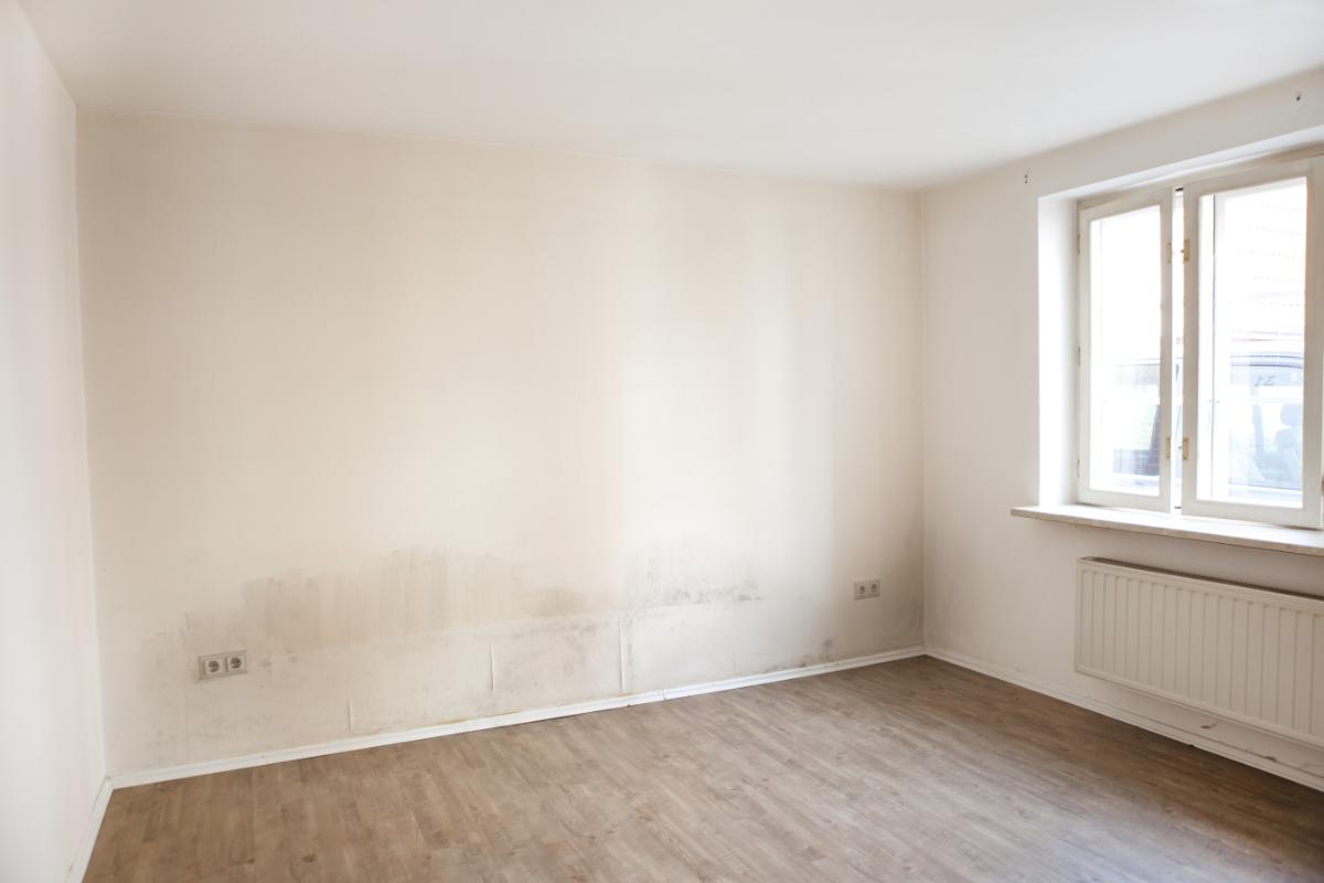 Zeer Schimmel in de slaapkamer - www.vochtinmuren.nl @QU22